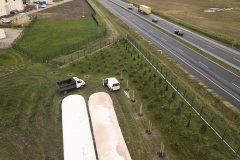 Bioagra-aleja-drzew_4
