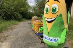 Bioagra-krolowe-na-terenie-Bioagry_03